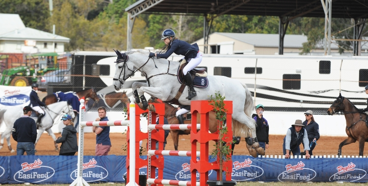 Equestrian Blog Of The Day - Barton Equine